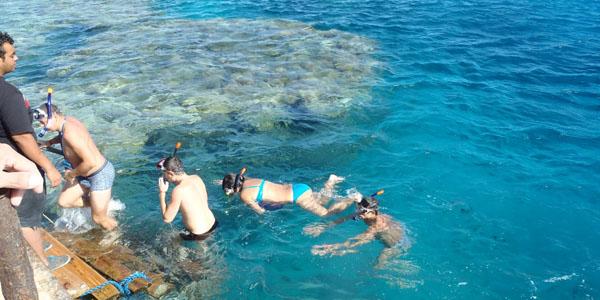 бухты с кораллом
