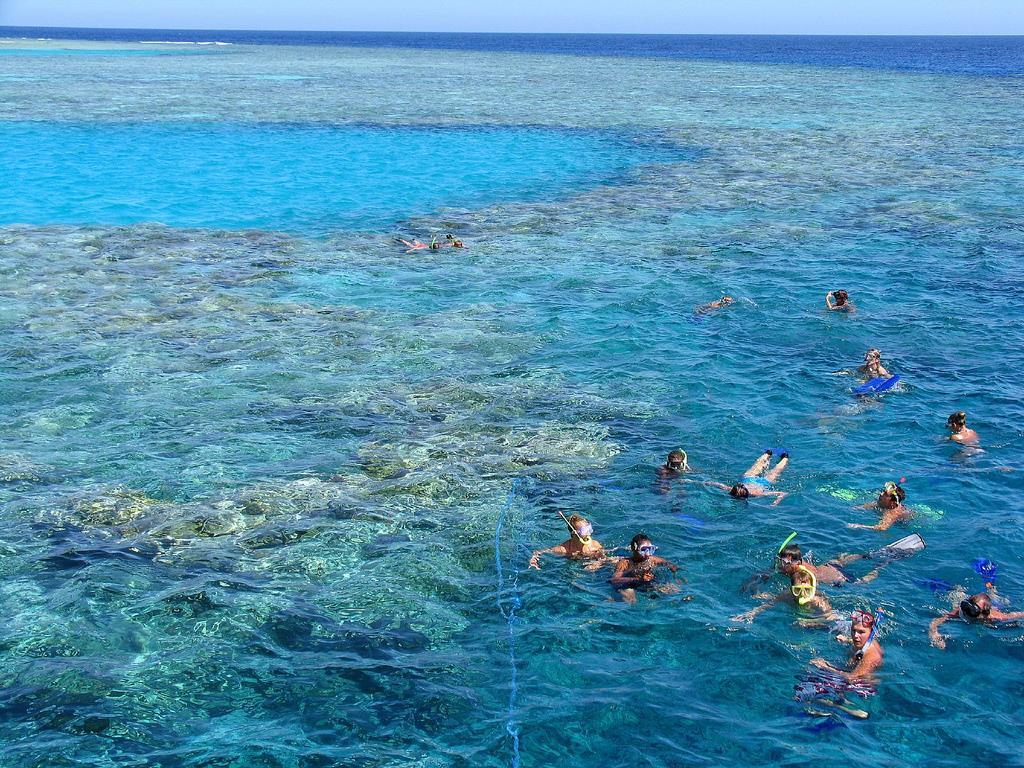 отели с кораллом
