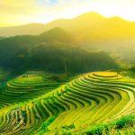 Минздрав обновил зеленую зону